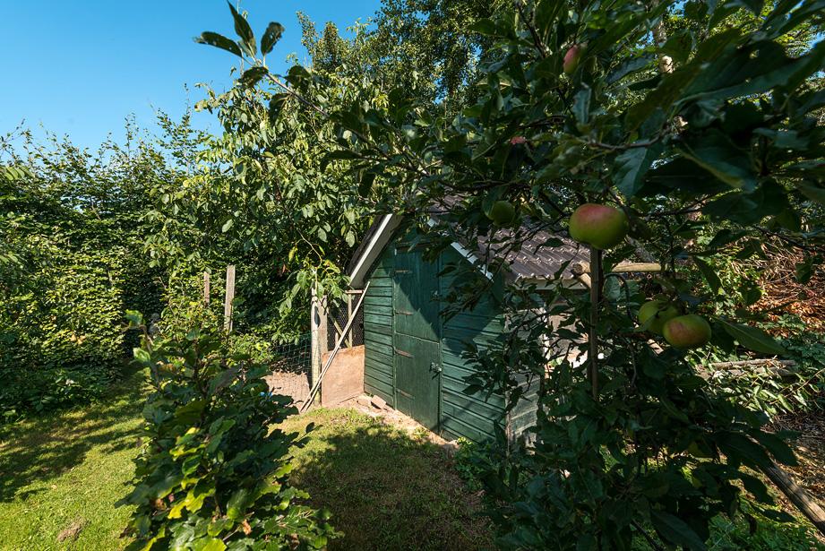 Interieurfotograaf woonboerderij - kippenhok en boomgaard